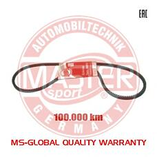 MASTER-SPORT AVX-10X1133-PCS-MS